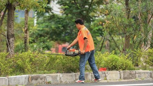 惠州管养绿化