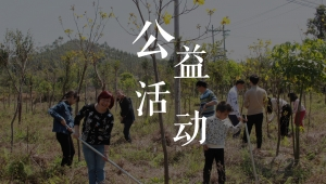 植树节-3q
