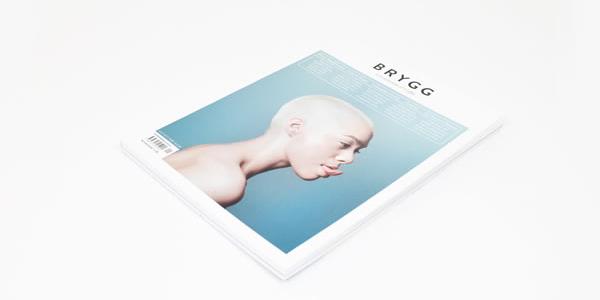 Brygg_8