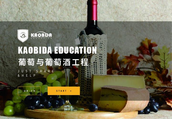 葡萄与葡萄酒工程