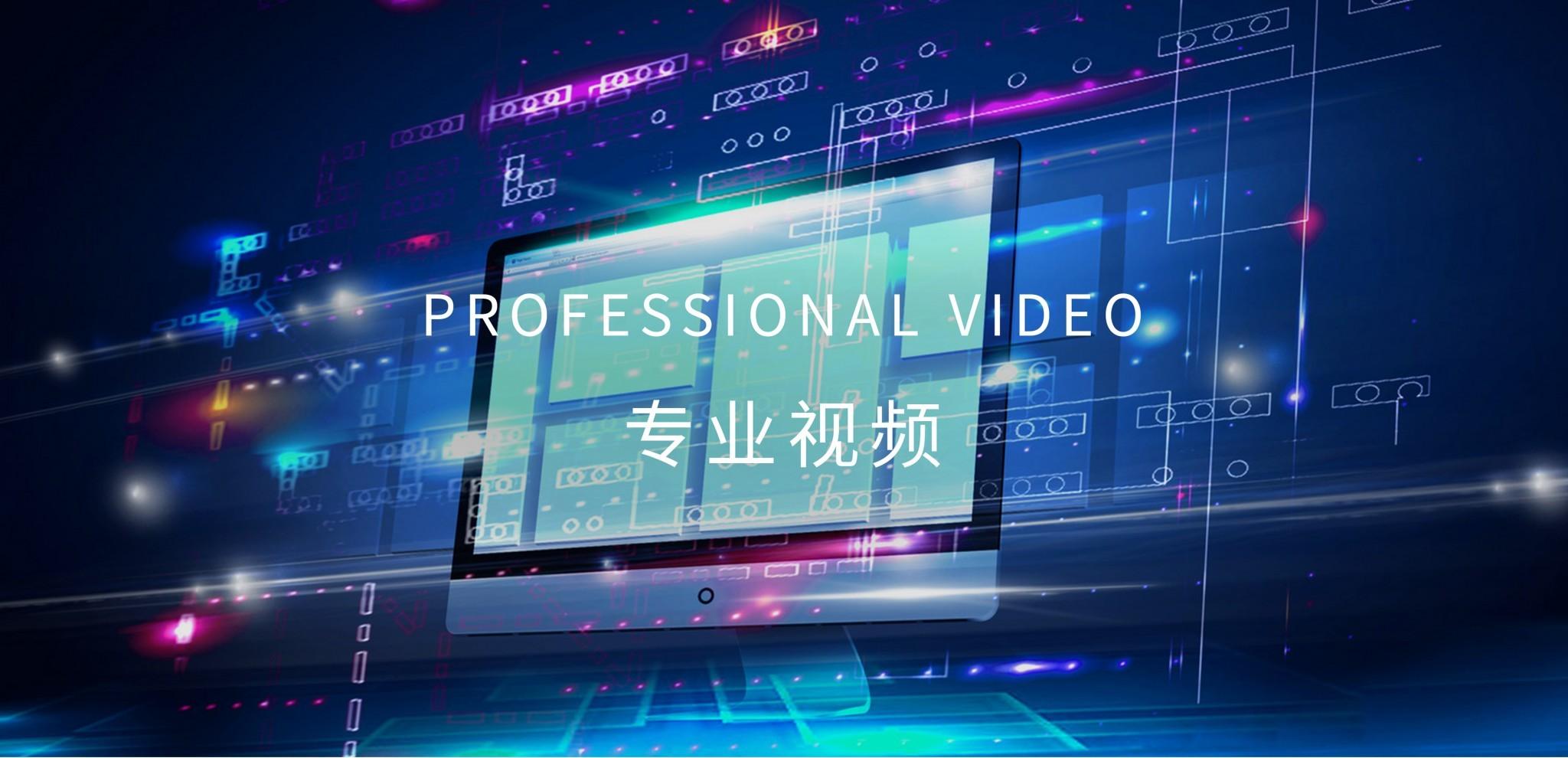 03专业视频
