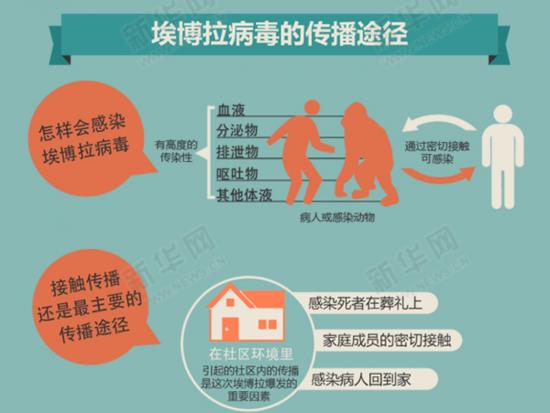 埃博拉病毒的传播途径 图片来源:新华网.png