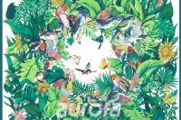 雨林沐风B8-002
