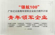 08-青年领军企业