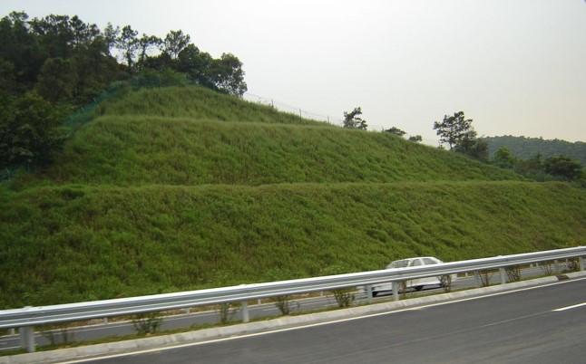 道路边坡生态