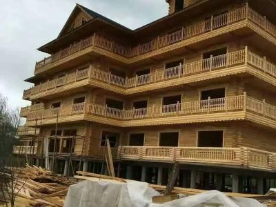 滨州大型木屋项目-防腐木木屋