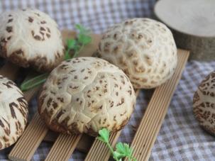泌阳花菇(2)
