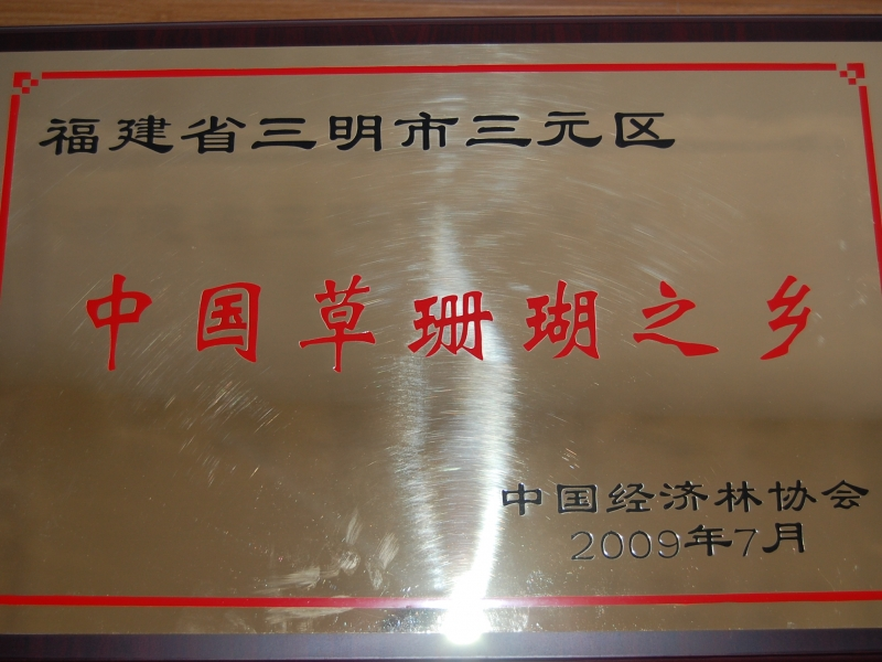 三元草珊瑚3