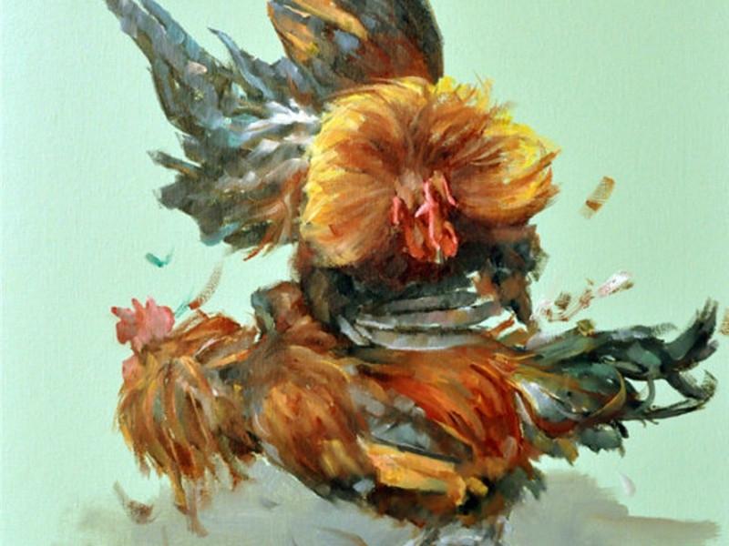 吐鲁番斗鸡1