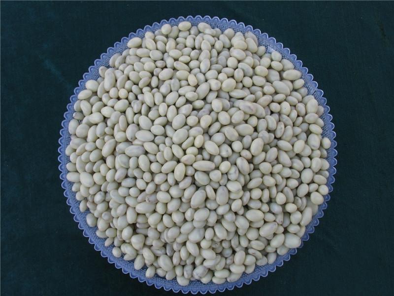 吐鲁番葡萄干2