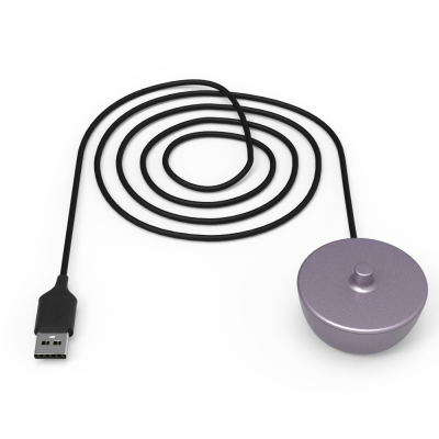 2422 charger purple