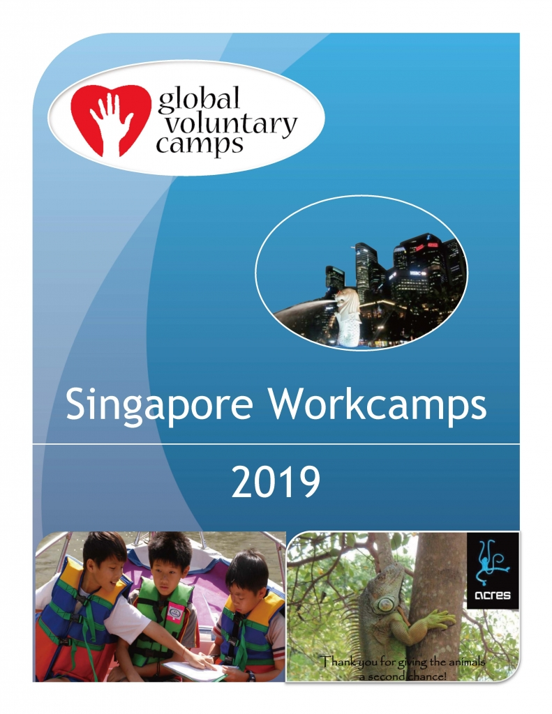 GVC SG WorkCamp 2019_页面_01