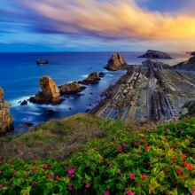 Costa-Quebrada-Cantabria-Spain-Biscay-Bay-flowers-rocks-sunset_1680x1050