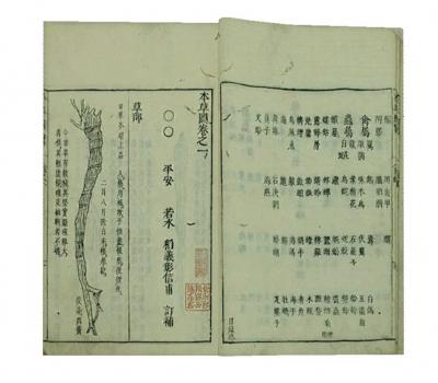 7-4_本草图四卷(日)