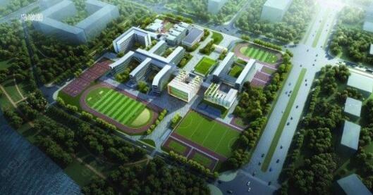 合肥上海世界外国语学校项目BIM工程咨询