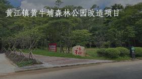 黄牛埔森林改造封面2