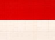 FLAG_INDONESIA_LEGO_SMALL
