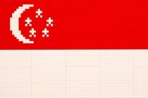 FLAG_SINGAPORE_LEGO_SMALL