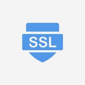 DV SSL安全证书 年费