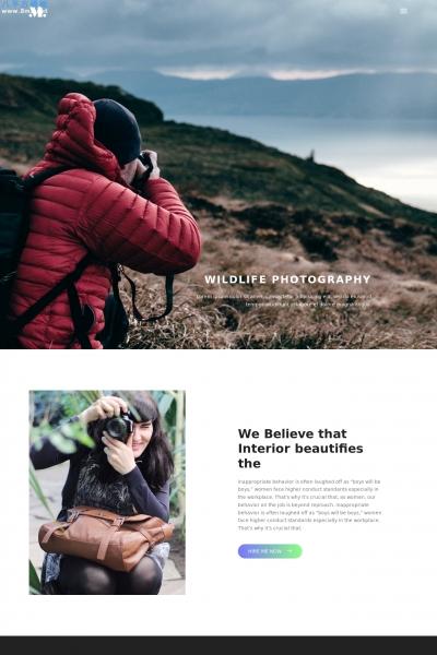 开源2019年湖水绿色灰色摄影网站模板