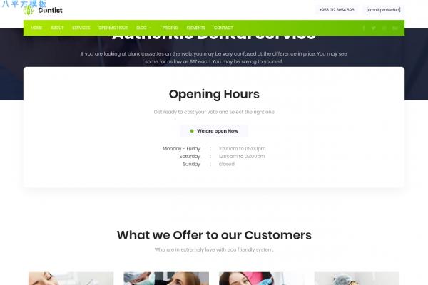 高端精品浅灰色深绿色牙科医院网站模板