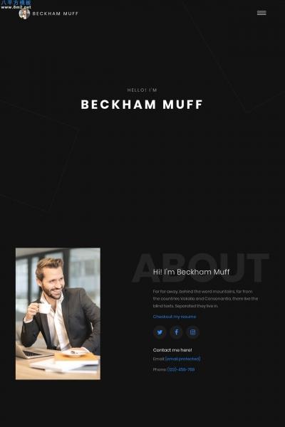 免费精品浅灰色黑色个人项目展示网站模板
