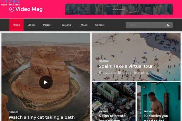 HTML5/CSS3灰色白色视频博客网站模板