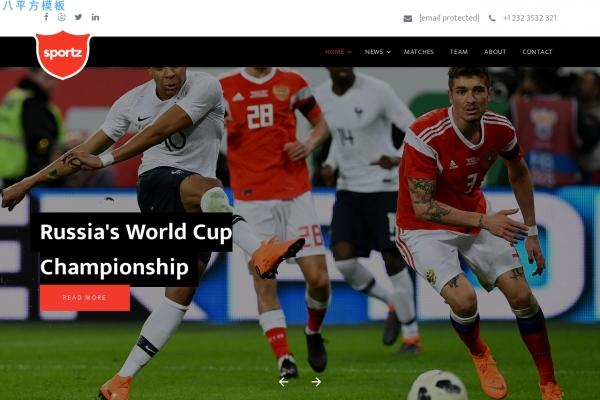 开源精品浅褐色白色体育网站模板