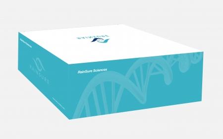 锐讯数字PCR试剂盒