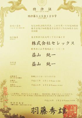 证书-05