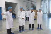 锦州市人大代表视察组莅临奥鸿药业调研民营经济发展情况