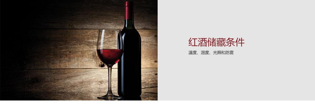 XS5990TWT3Y红酒柜系列(1)