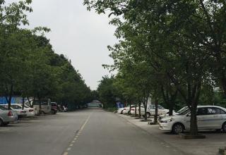 交安驾校(信息工程学院)