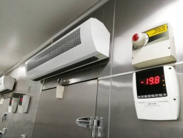 Low Temperature of Front Frozen Food Storage Cold Room.