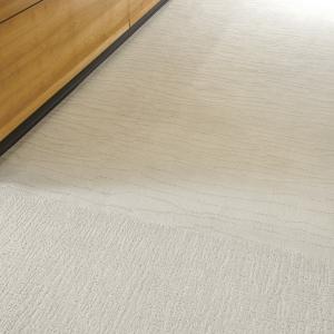 72_dpi_4A9J_CloseUp_carpet_PRADO_RIALTO_605_BEIGE_2