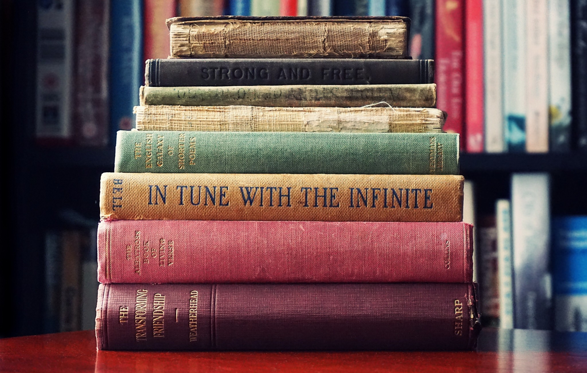 pile-of-assorted-title-book-lot-selective-focus-photographt-1130980