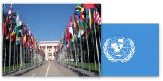 联合国 法规