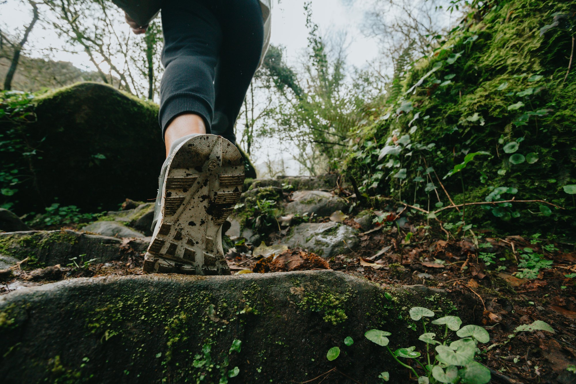 low angle of a person walking up stone steps through a forest 走在石阶上穿过森林的人的低角度