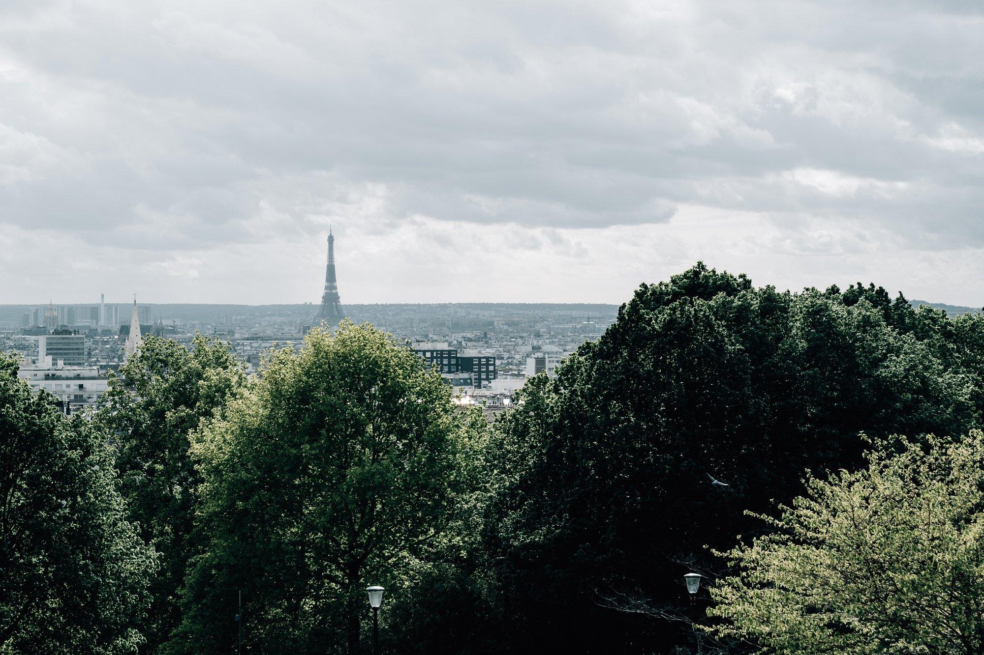 paris skyline with the eiffel tower on the horizon 巴黎地平线上有埃菲尔铁塔
