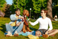 man and woman sitting on green grass field holding brown bear plush toy during daytime 白天,男人和女人坐在青草地上拿着棕熊毛绒玩具。