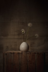white round ball on brown wooden table