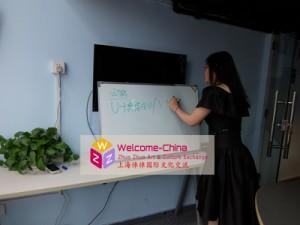 赴韩国汉语教师 - 于老师培训中
