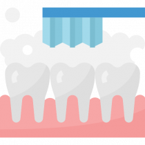 Download Tooth Cleaning for free 免费下载清洁牙齿
