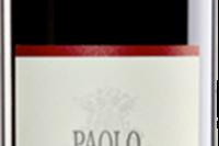 宝维诺酒庄阿尔巴巴贝拉红葡萄酒