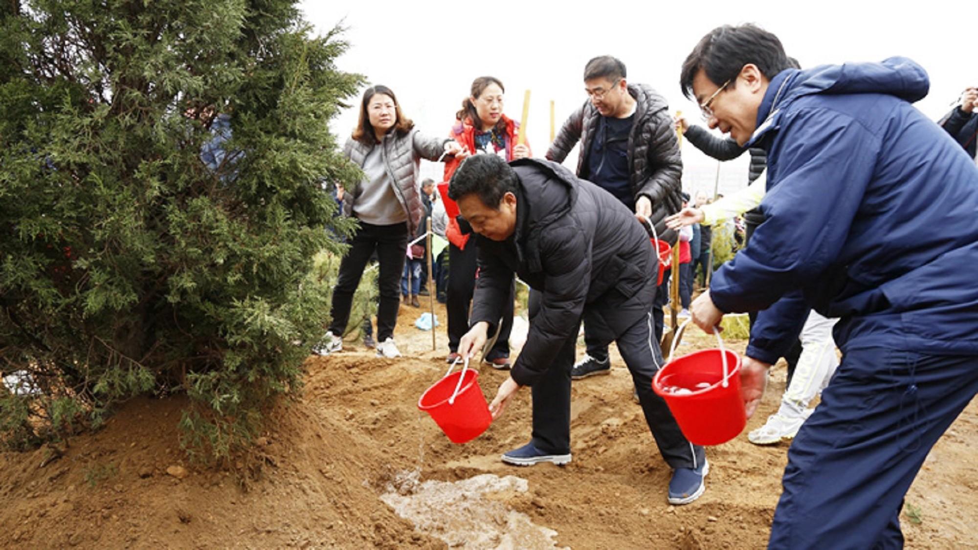 九龙城植树节活动2