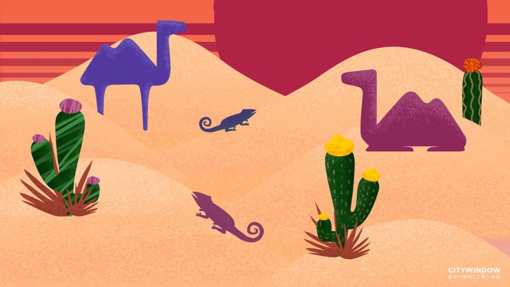 地球日沙漠