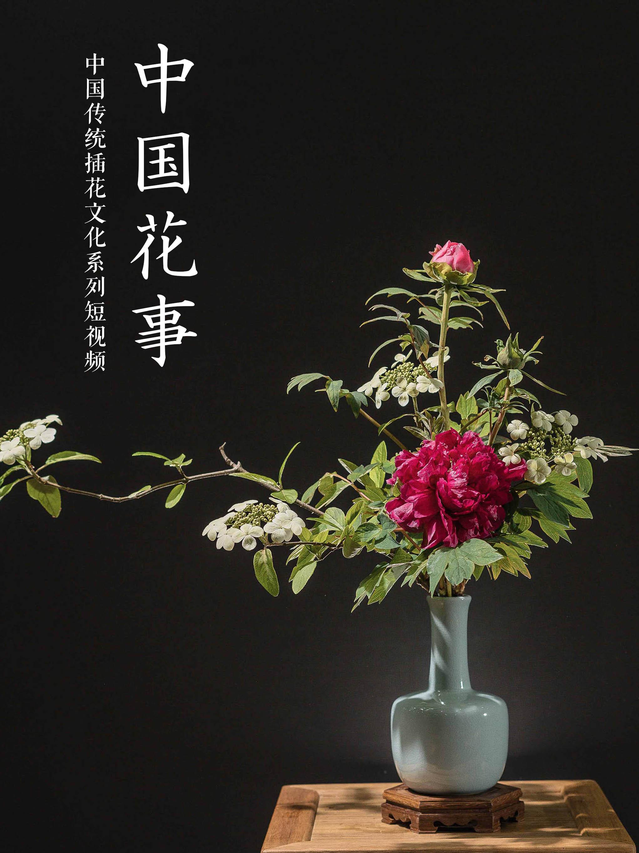 中国花事02sss