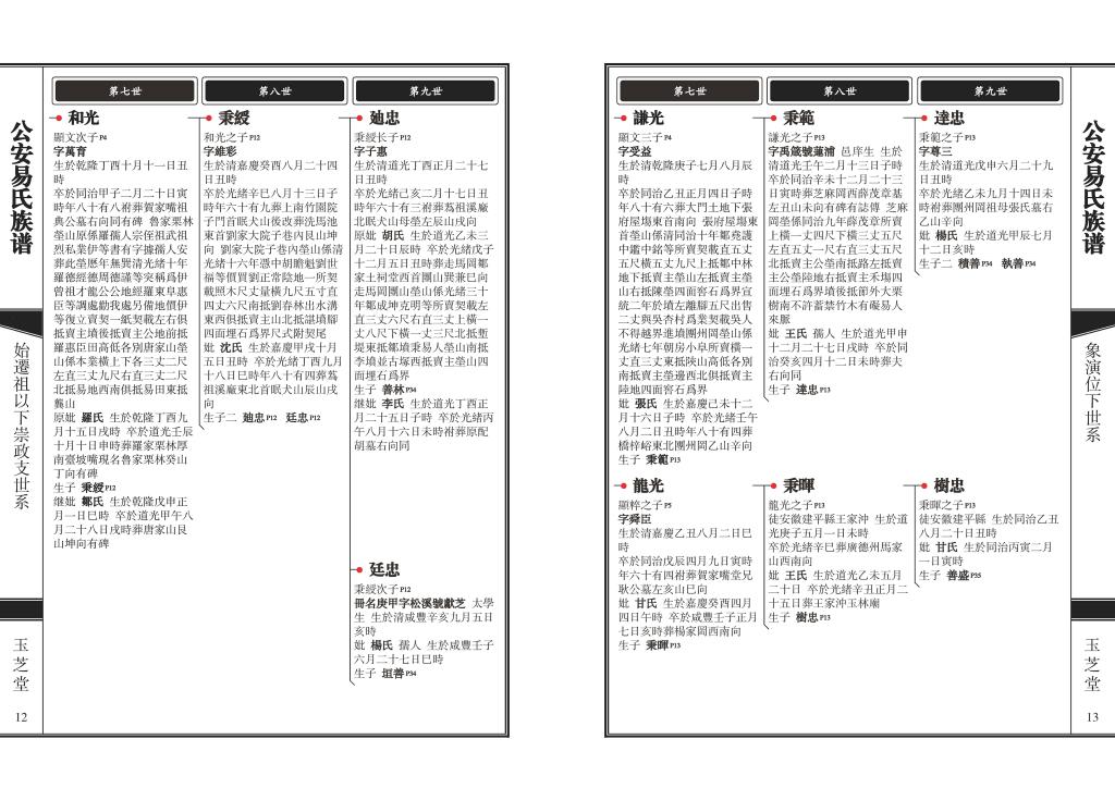 家谱图版式体例07