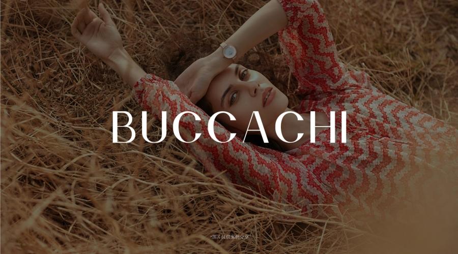 BUCCACHI案例整理_画板 1
