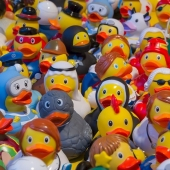 toy-ducks-535335_1280